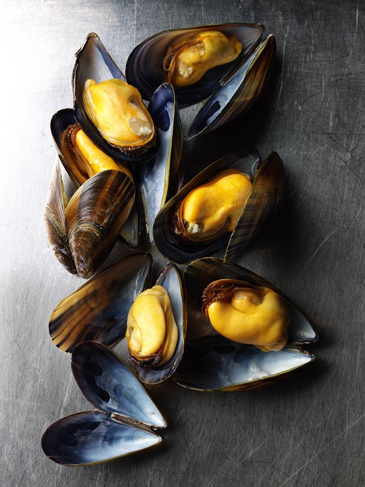 Mussels 3.jpg