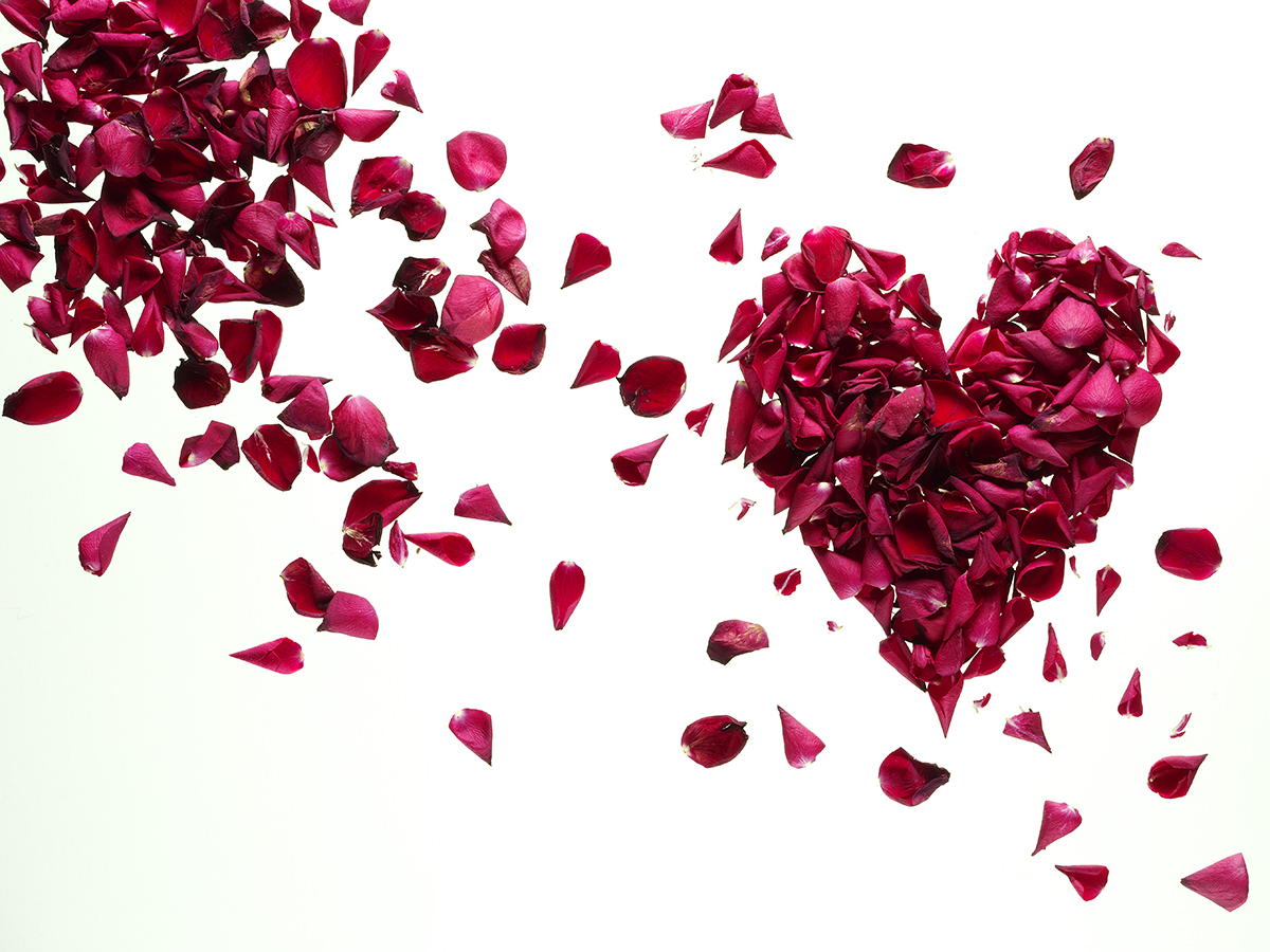 Valentine SHARPENED.jpg