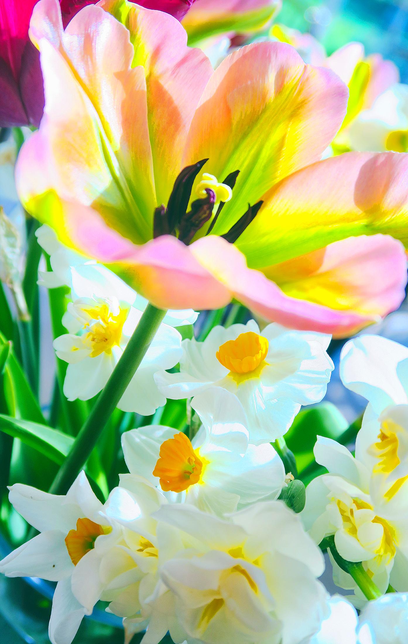 Easter Flowers Resized.JPG