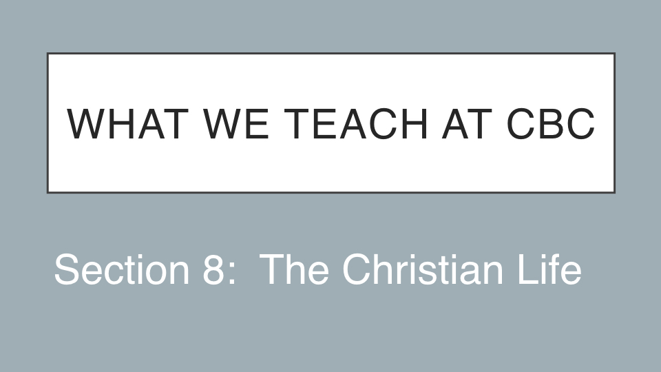 Sermon #42. CBC. 7.1.18 PM. Doctrinal Statement. The Christian Life. proj.001.jpeg