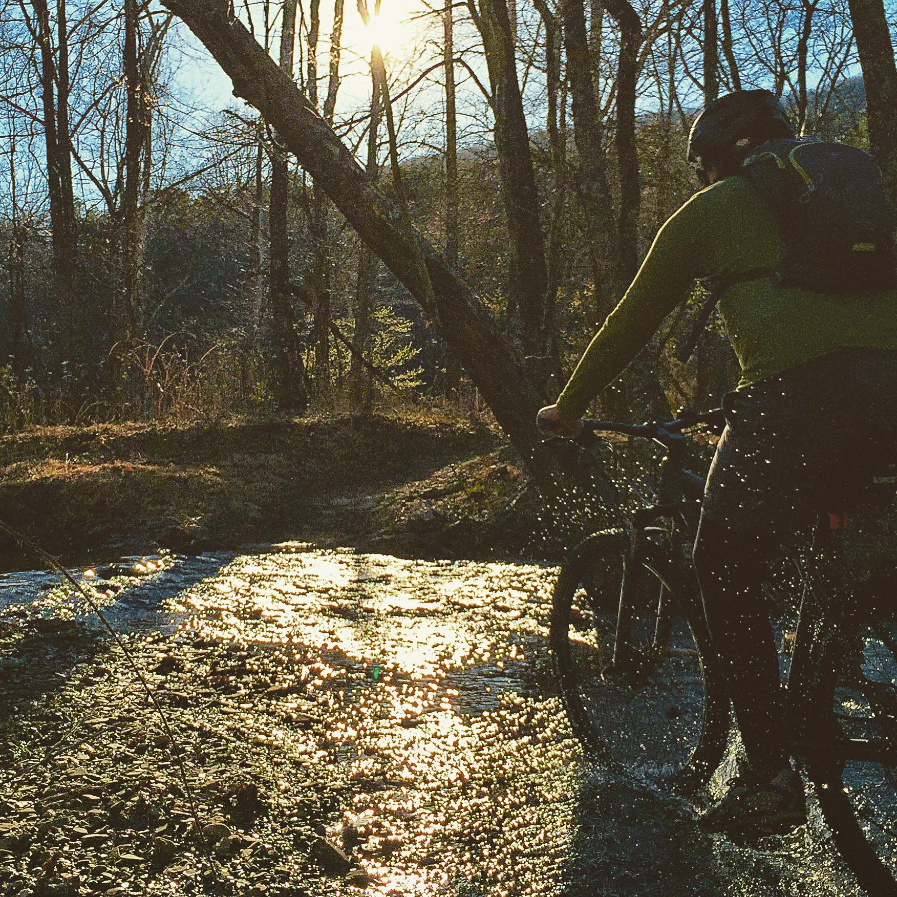 Mountain Biking at Carvins Cove in Roanoke Virginia