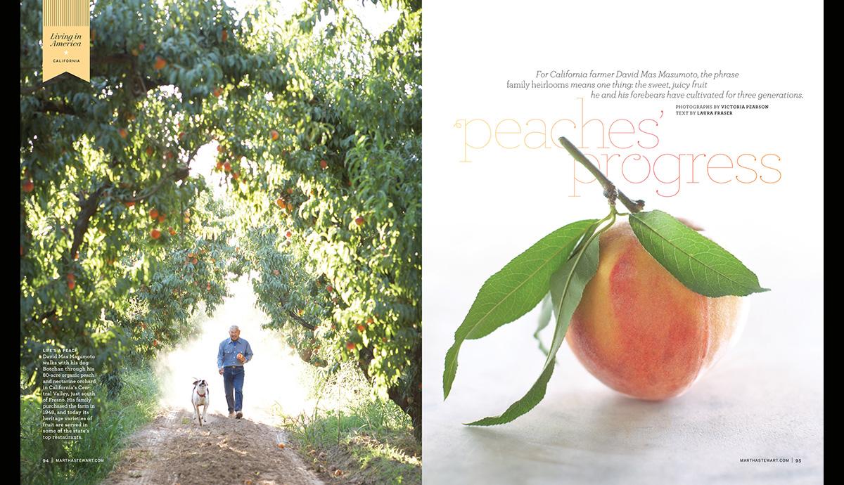Peaches Progress