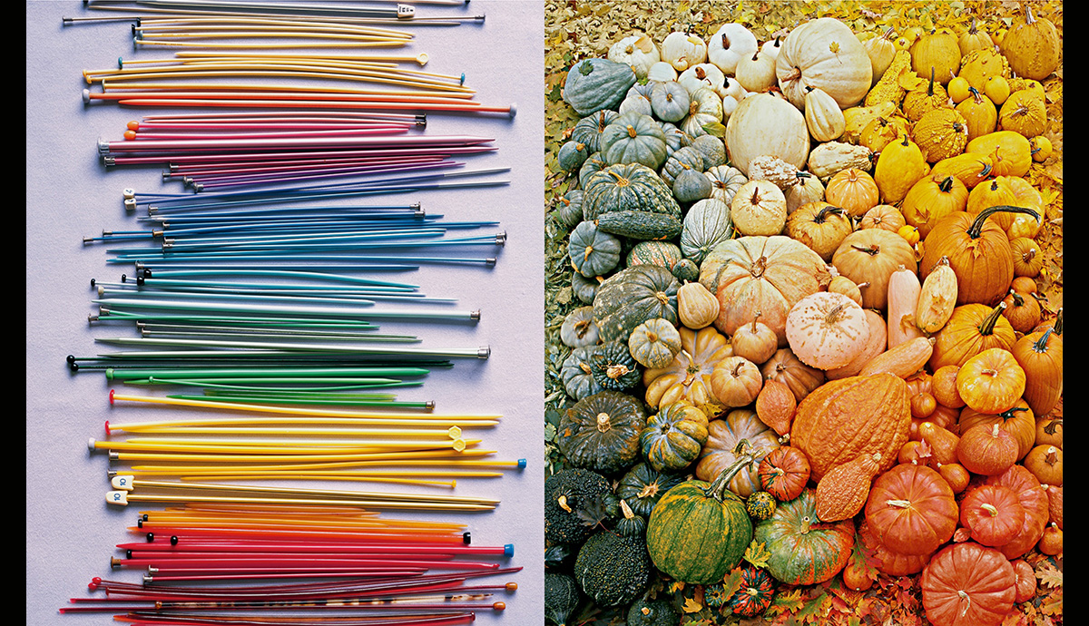 Knitting Needle and Pumpkin Color Exploration