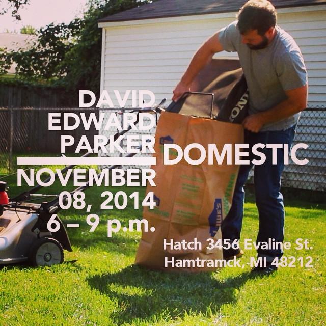 David Edward Parker: Domestic