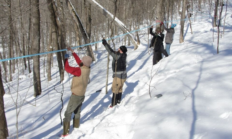 Maple Syruping takes a village, and we have the best one.