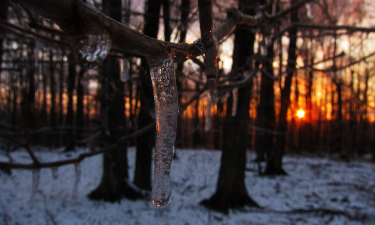Sunset & signs of thaw