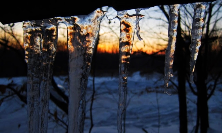 The first signs of winter's thaw...