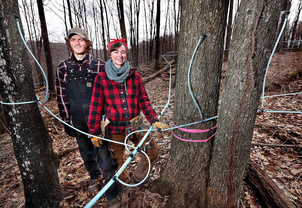 La Crosse Tribune - March 5, 2017 STEVE CAHALANCASHTON — The maple sap began flowing early this year at the expanding B&E's Trees farm south of Cashton, where owners Bree Breckel and Eric Weninger have put up a building with their own evaporator inside to boil the sap to create syrup.Once they've made their certified organic maple syrup, it will be aged for a year in charred oak bourbon barrels at the Food Enterprise Center in Viroqua, to give it a unique flavor. --->
