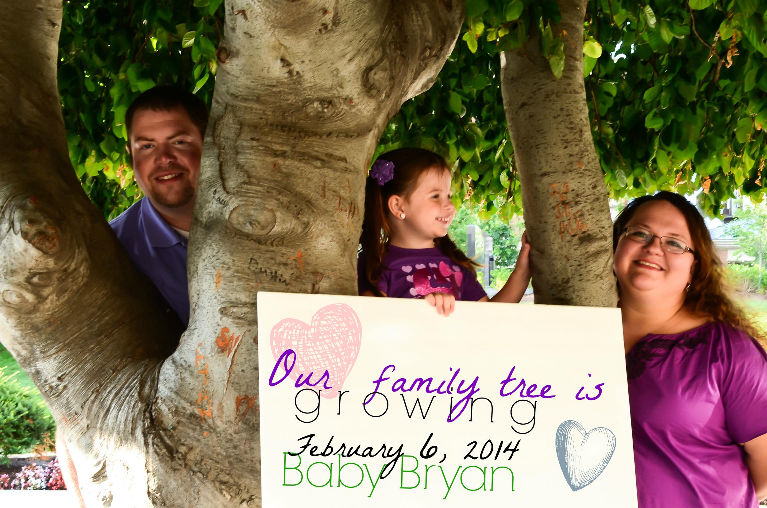 Baby Bryan family tree correct date.jpg