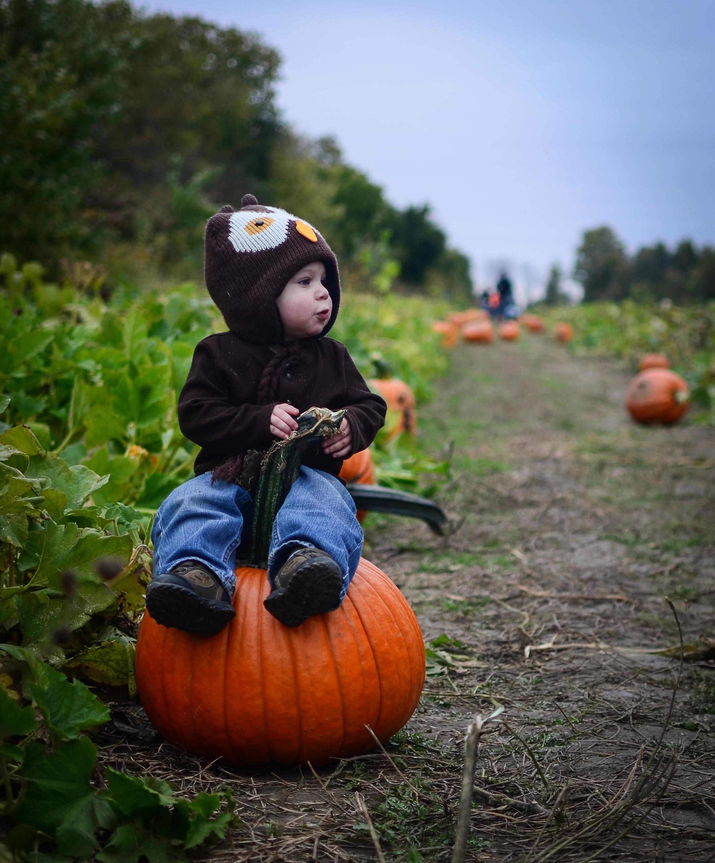 Eddie Pumpkin