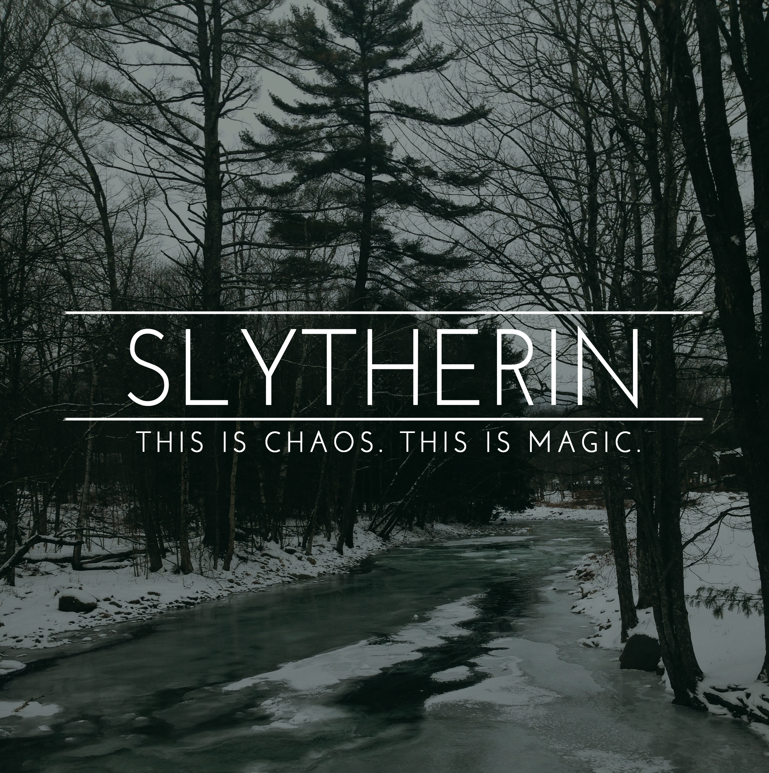 Slytherin Pride, This is chaos, This is magic