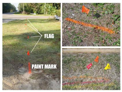 flag_proper.jpg
