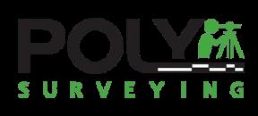 Polysurveying.png
