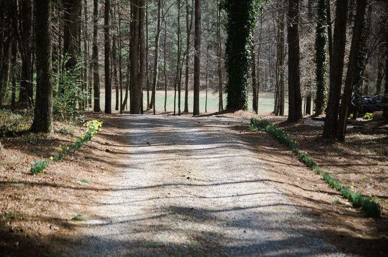 03_snows_mill_guesthouse_driveway.jpg
