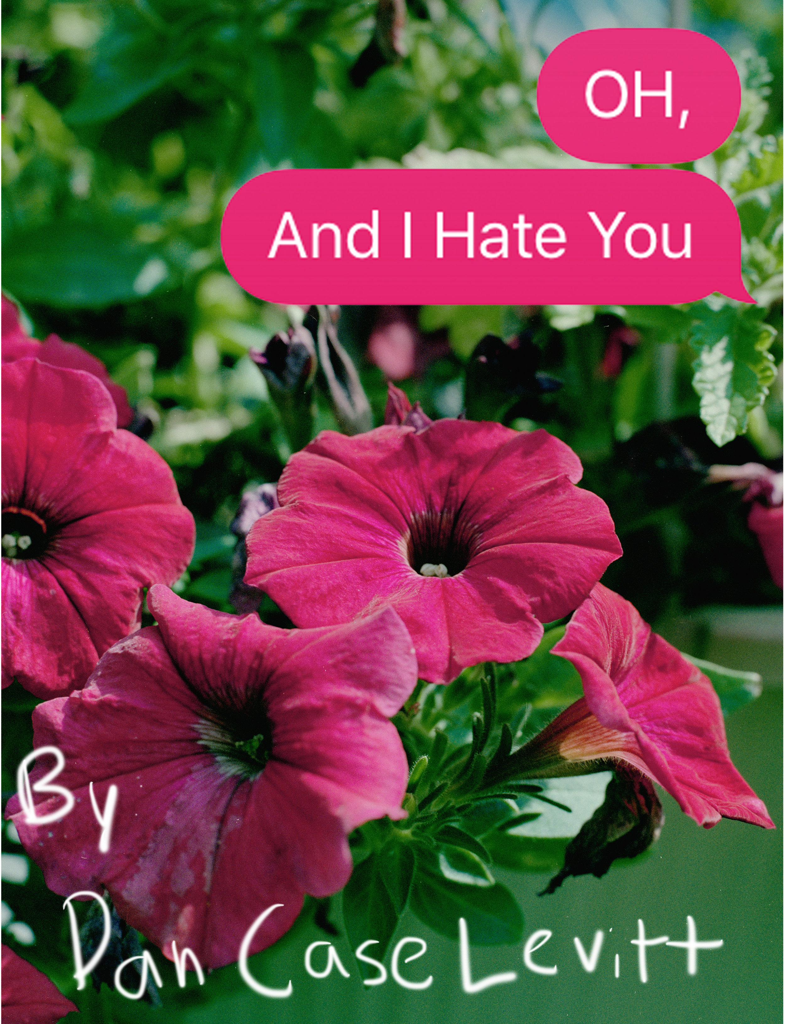 And I Hate You_WebPages_Final_091718.jpg