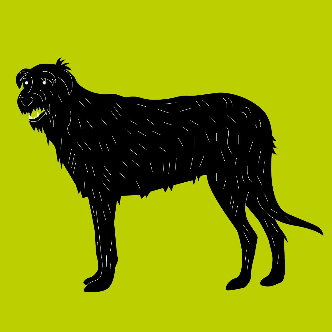 IrishWolfhound.png