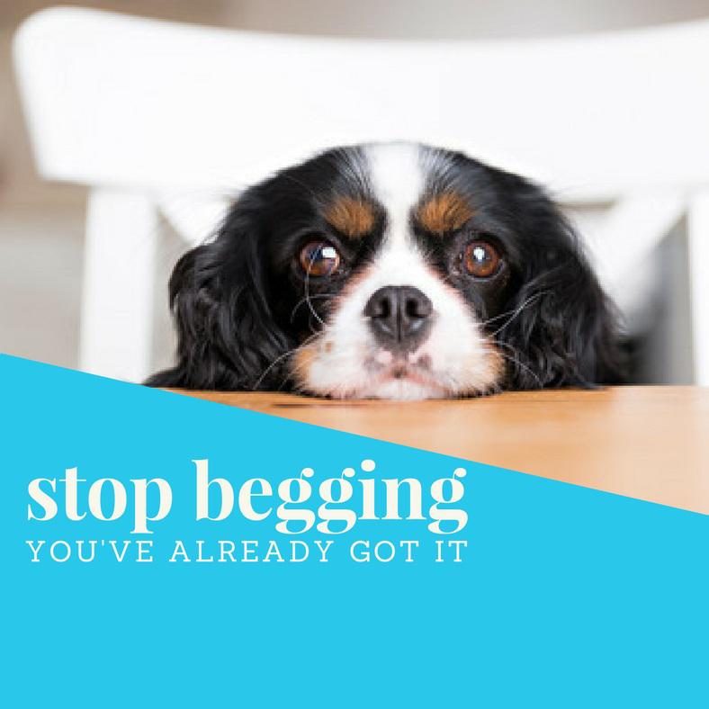 Stop-begging-2.jpg