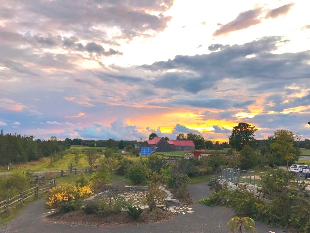 sunset-1.jpg