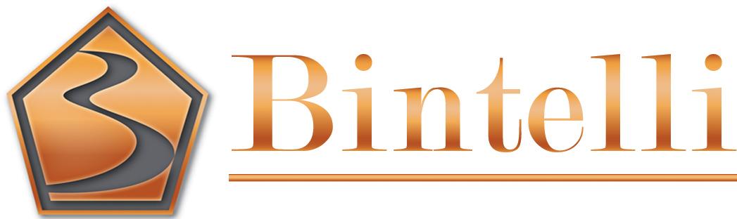 Bintelli Logo.jpg