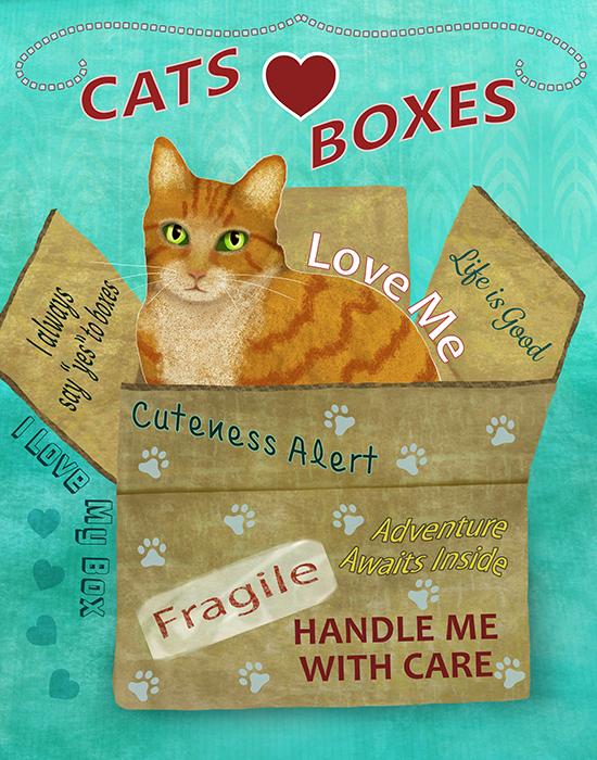 cat-in-box-Yellow-web.jpg