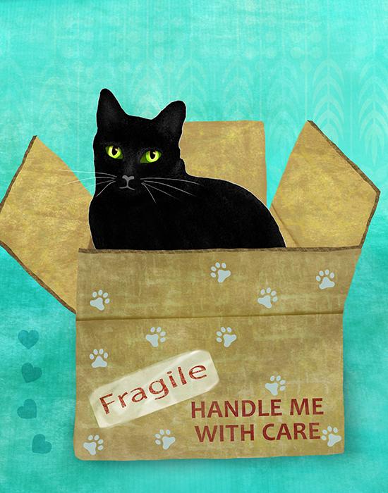 cat-in-box-BLACK-no-text.jpg