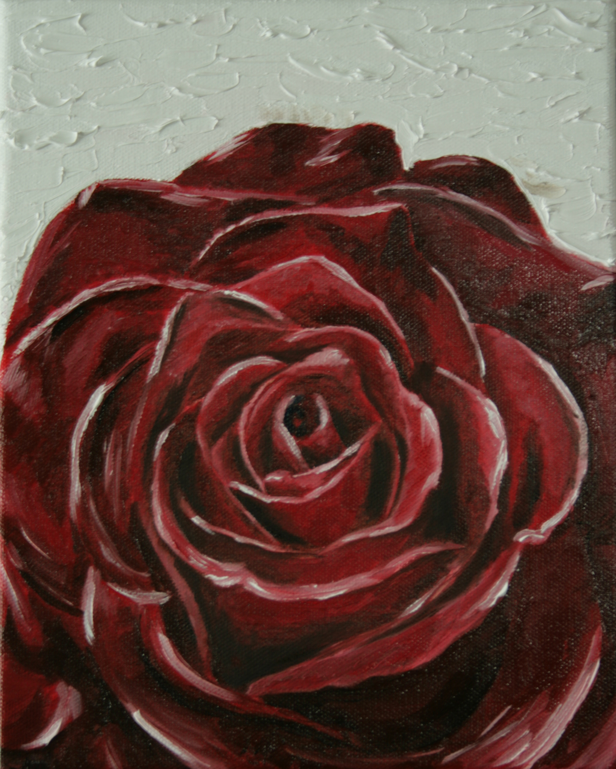 Red Rose, Oil on canvas, 11''x14'', 2008