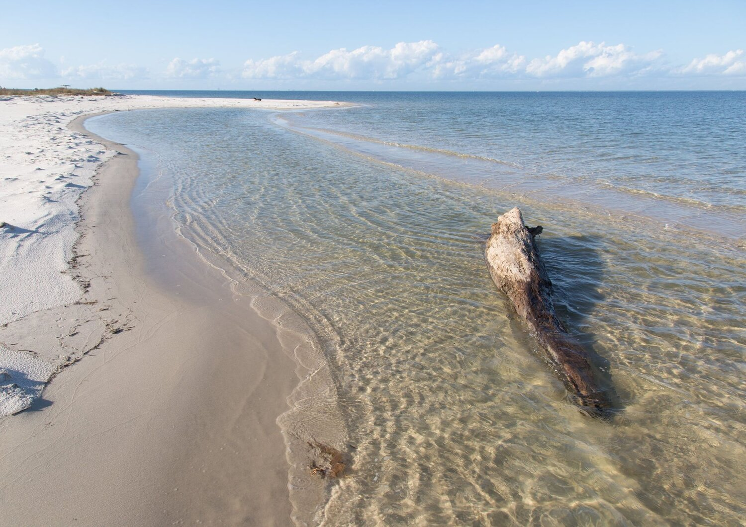 Click the image to visit the National Seashore website!