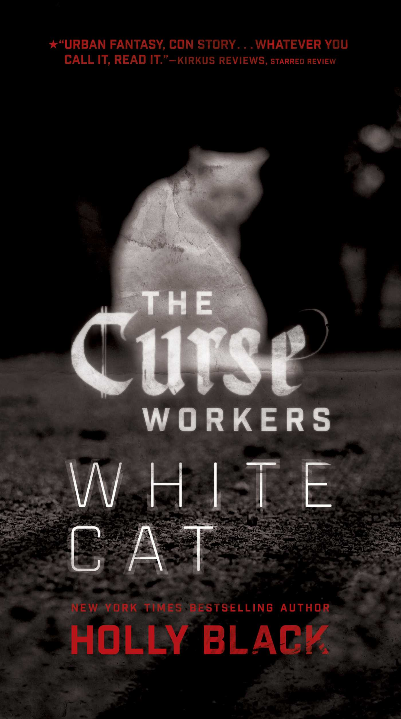 holly-black-white-cat.jpg