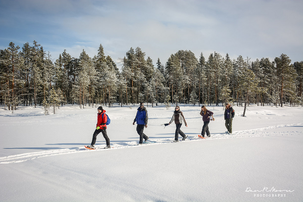 Copy of Snowshoeing