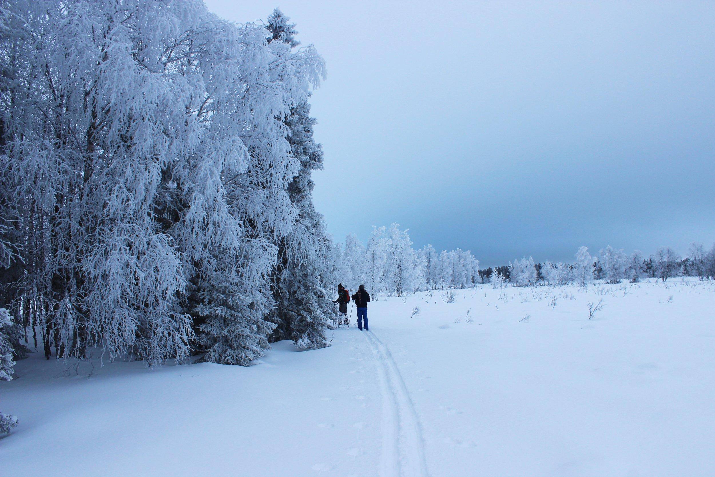 Lapland Zweden deel 4 506 (2).JPG