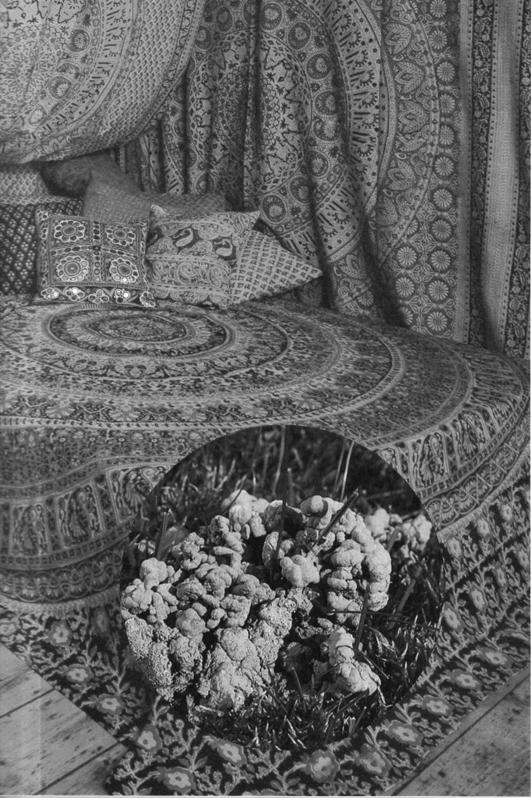 Indian Batik Bedroom and Worm Cast