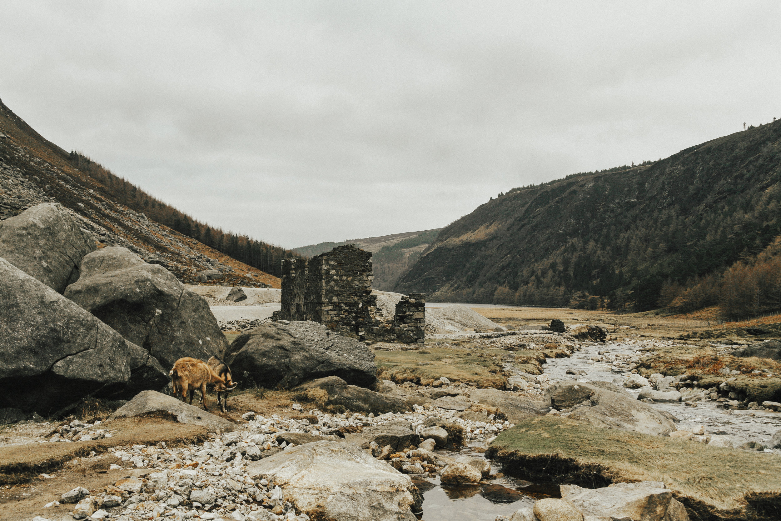 "Glendalough (Irish: Gleann Dá Loch, meaning ""Valley of two lakes"") is a glacial valley in County Wicklow, Ireland, renowned for an Early Medieval monastic settlement founded in the 6th century by St Kevin."