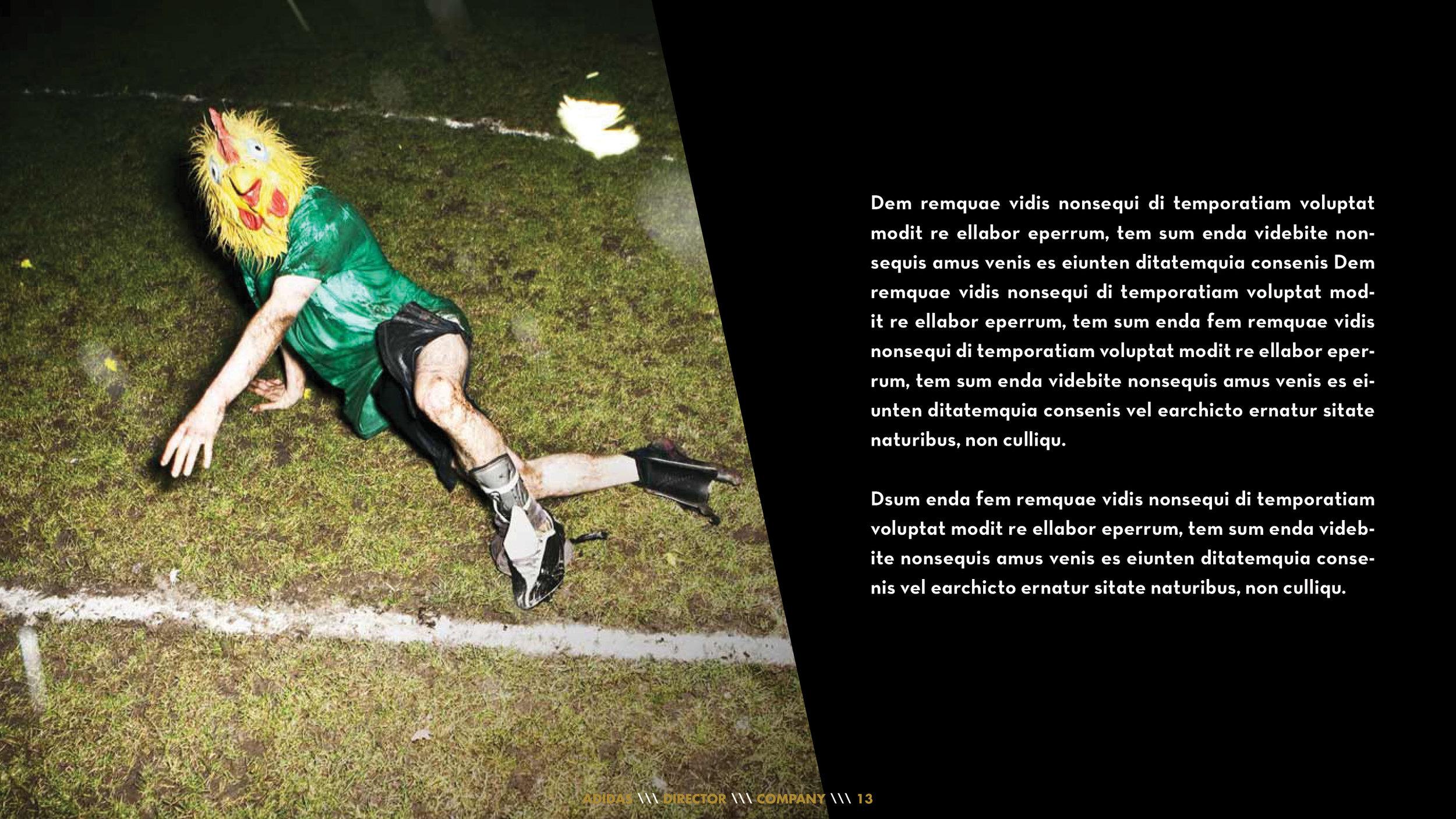 Adidas Predator13.jpg