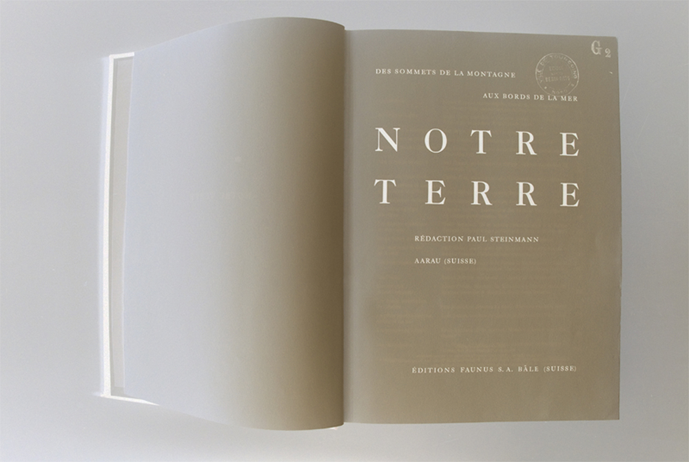 Inversion histories,  Archival digital print, 19 x 26 inches, 2011