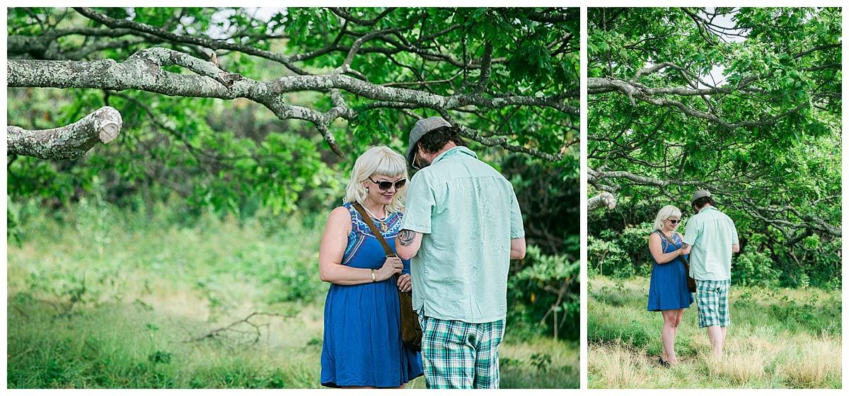 hendersonville proposal photographer