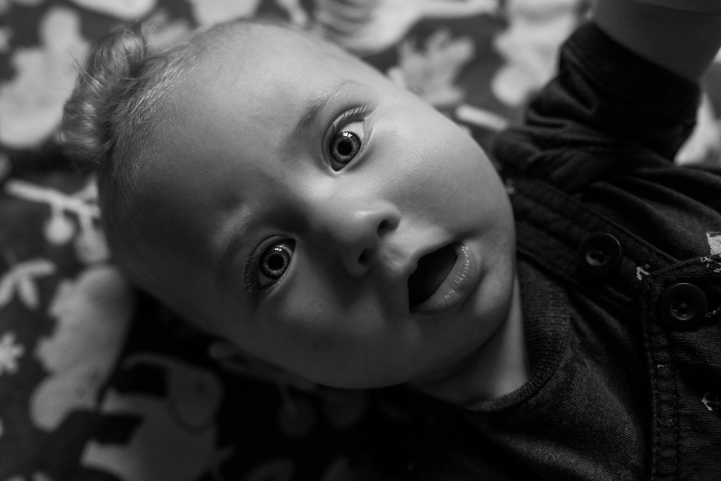 asheville baby photographer
