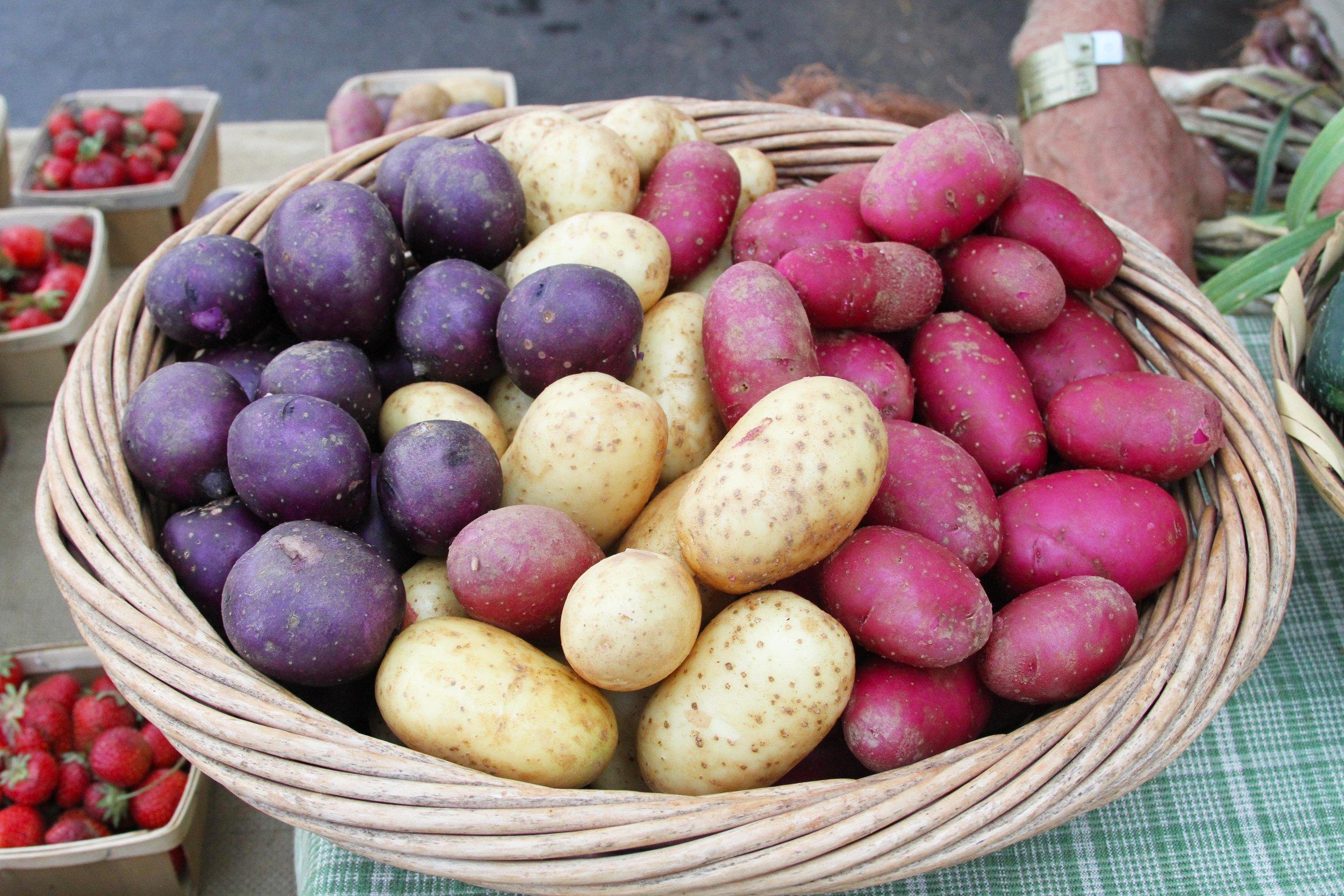 CCBC_FarmersMarket_Potatoes.jpg