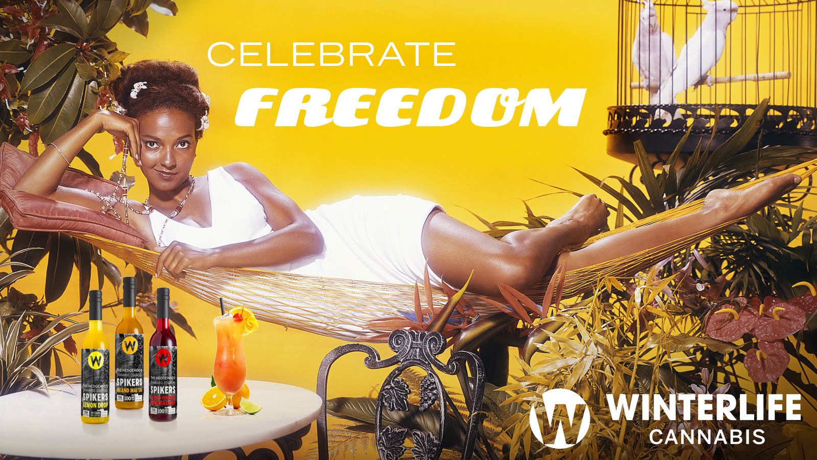 celebratefreedomretro_websiteslide.jpg