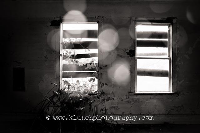 KLutch Photography, Surrey family phtography, family photography,Vancouver family photographer, Surrey newborn photographer-3034
