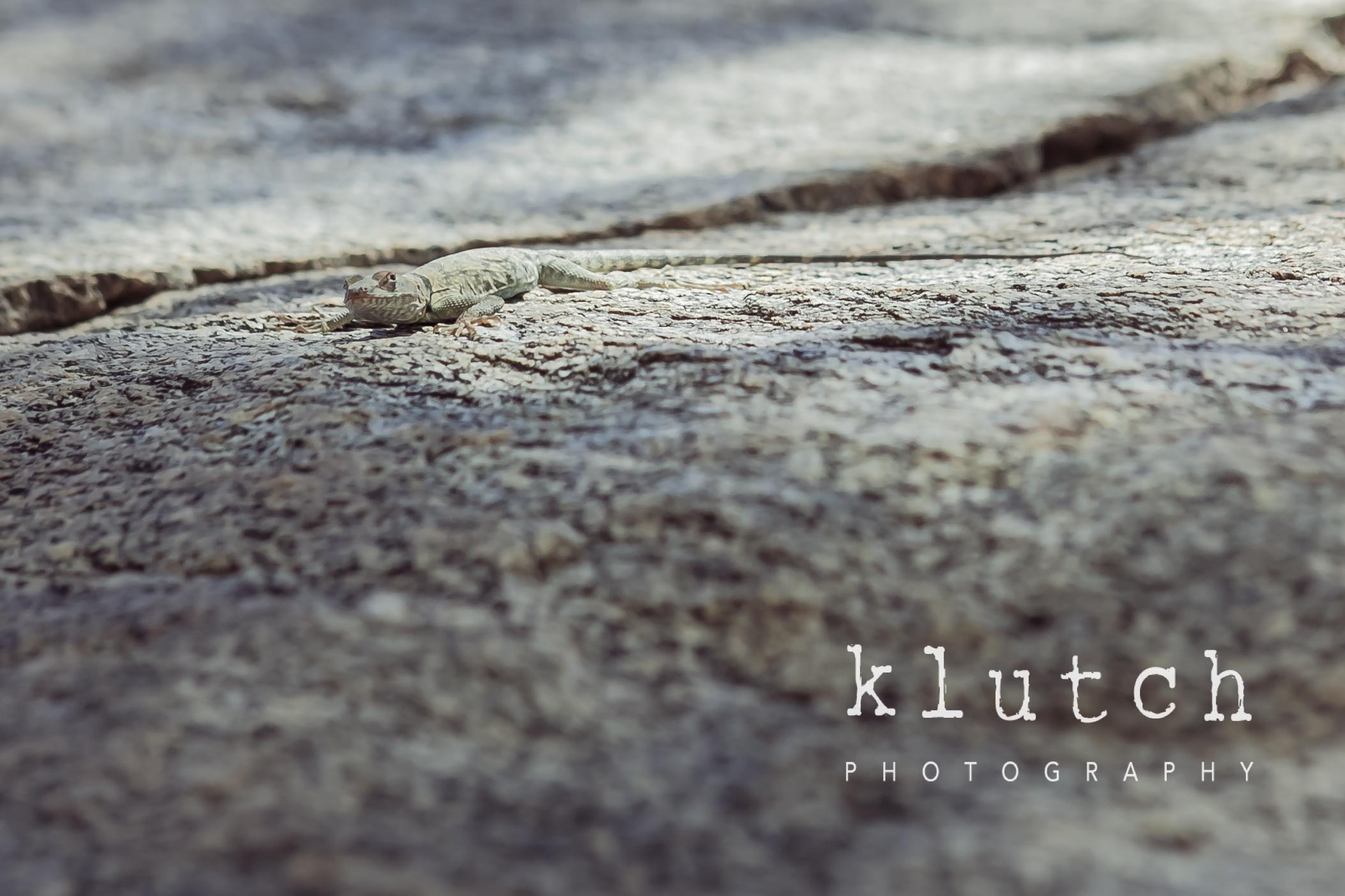 Klutch Photography,white rock family photographer, vancouver family photographer, whiterock lifestyle photographer, life unscripted photographer, life unscripted session, photography,Dina Ferreira Stoddard-1-4.jpg