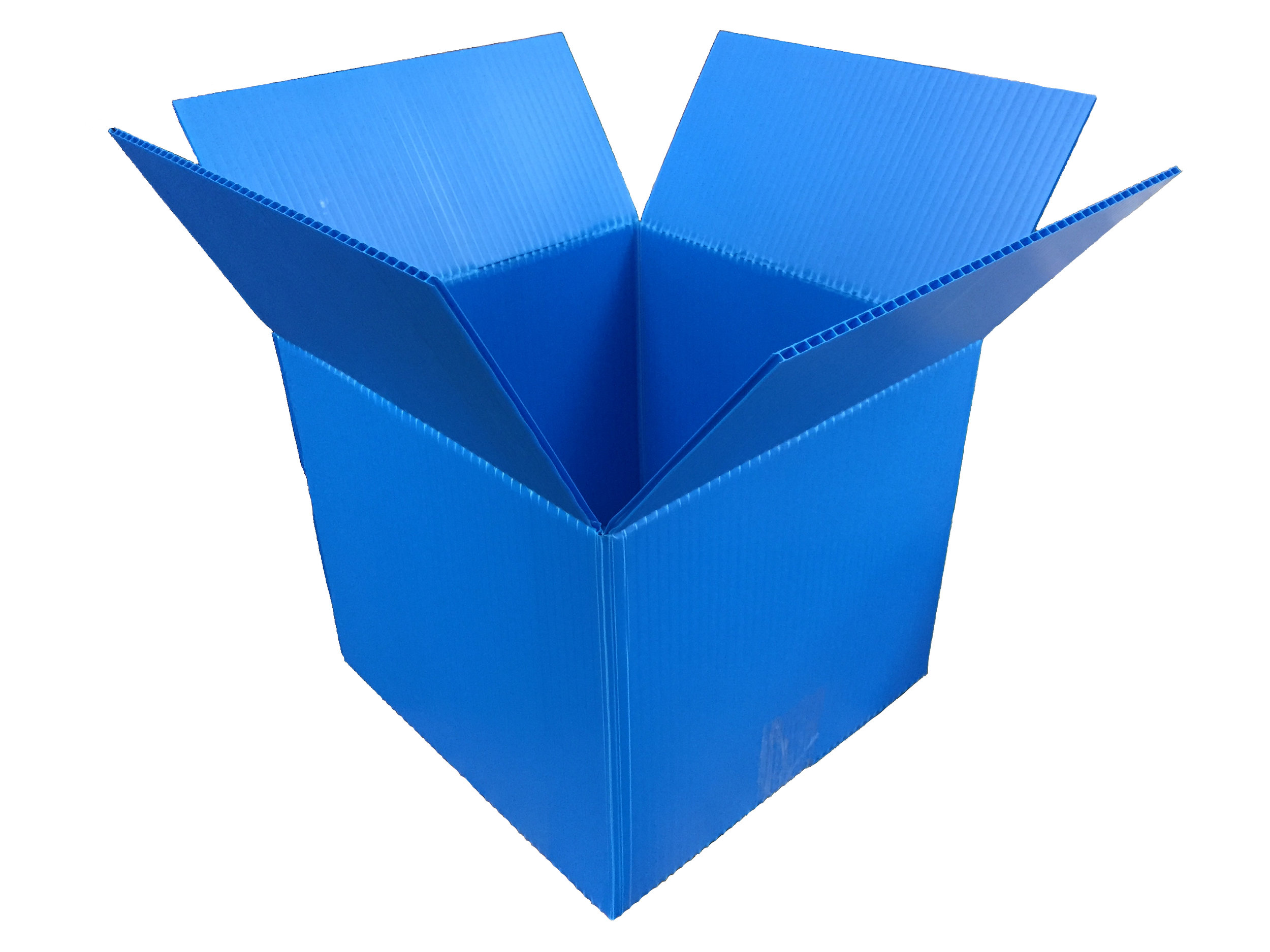 Blue RSC.jpg