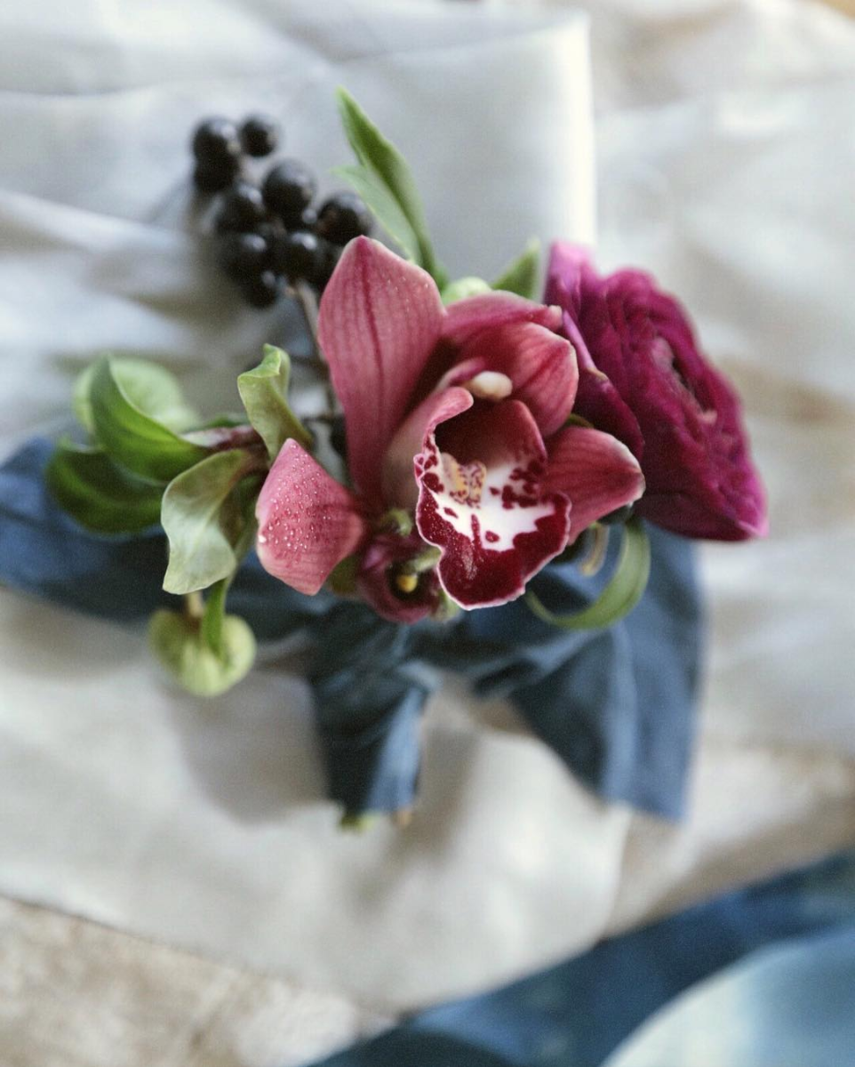 wilder-orchid-bout.jpg