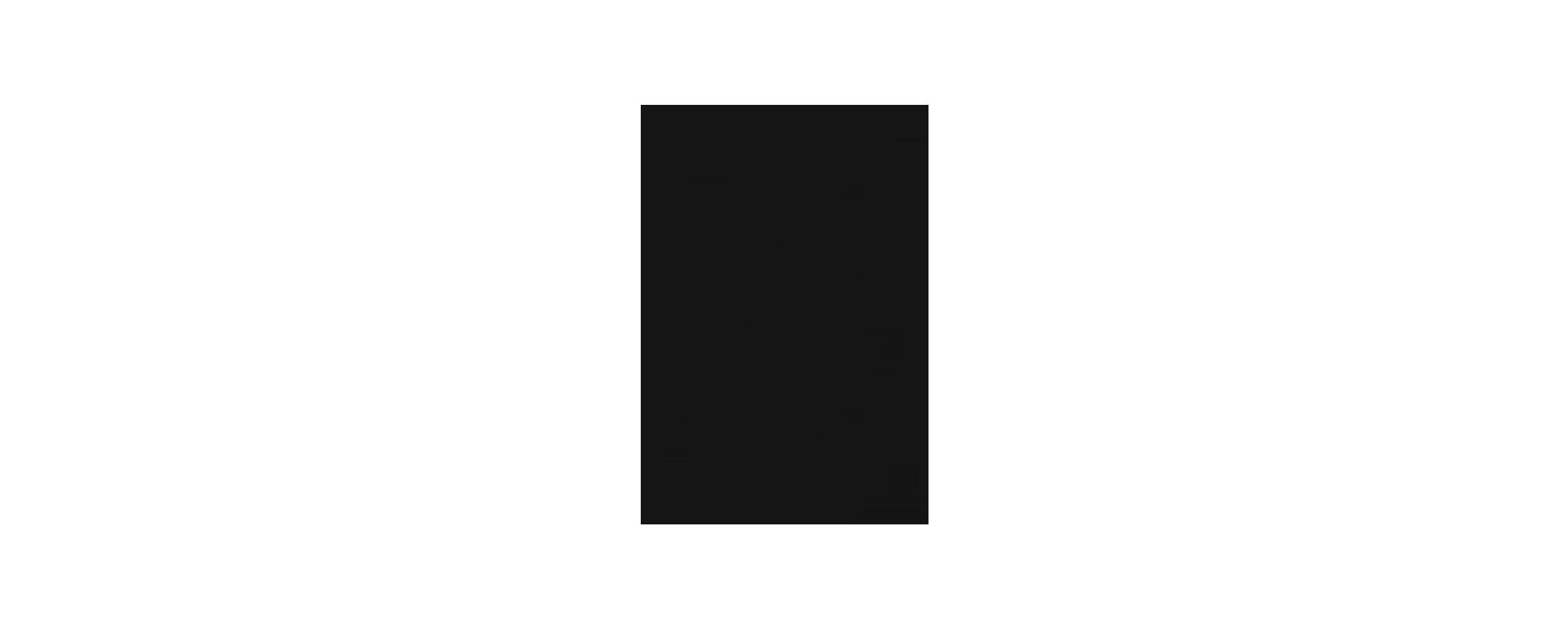 Nikki-Anchor-Illustration.png