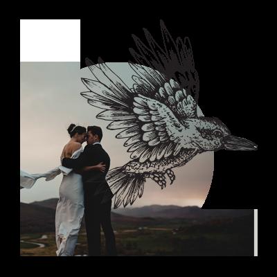 Nikki-Homepage-Bird-Circle2.png