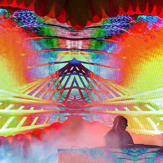 Sonic bloom @jadecicada.flac photo @christopherbeikirch video @mega.pixel.art