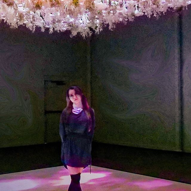 Got to work with @mega.pixel.art making an immersive installation in Long Beach!  Go see it! It's called @theartofbloom and its up and running until September 30.