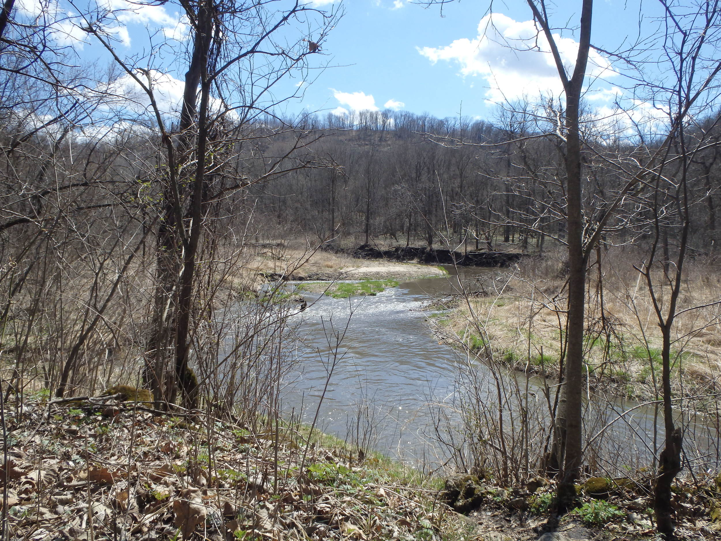 Whitewater River in SE MN