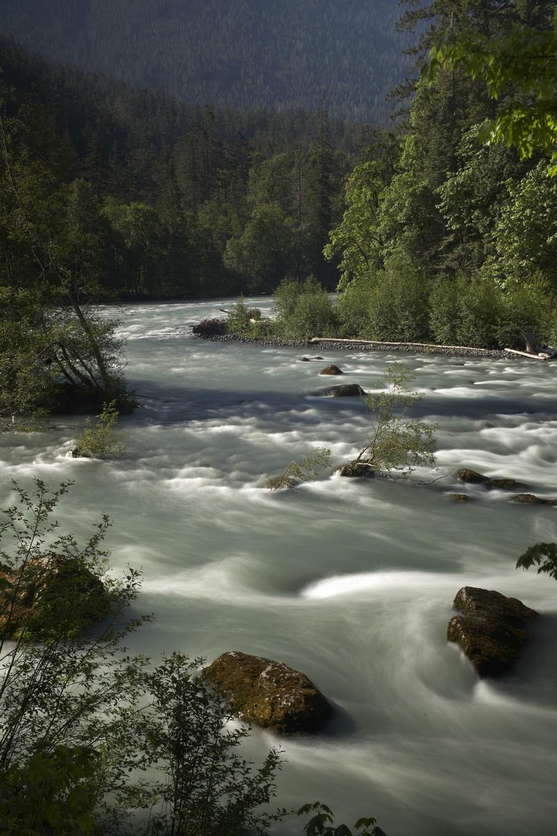 ELWHA RIVER PRE-DAM REMOVAL