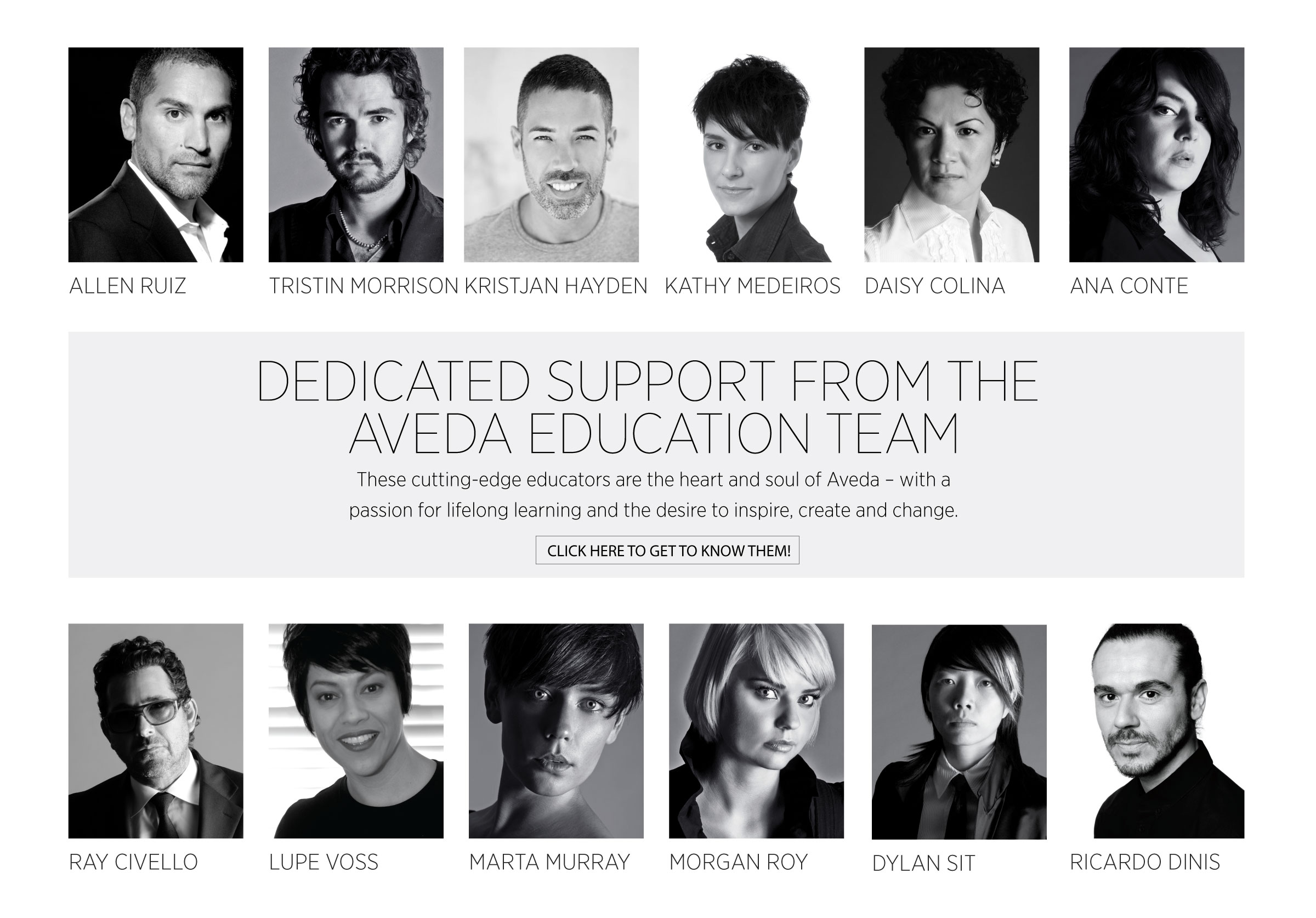 _AVEDA-NEW-BUSINESS---EDUCATION.jpg