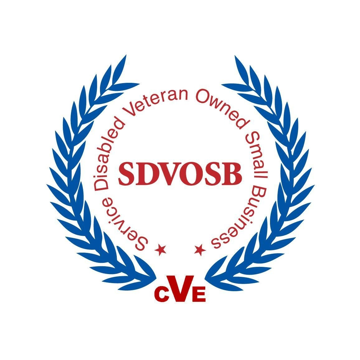 SDVOSB-logo white background.jpg